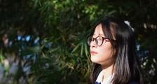 2020年沈阳职业技术学院开展单独考试招生工作实施方案